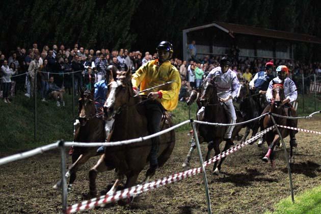 Gran finale della Sagra di Mordano con i cavalli e il Palio dei Borghi