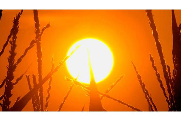 Caldo, allerta massima (Rossa) della Regione fino a mezzanotte di oggi