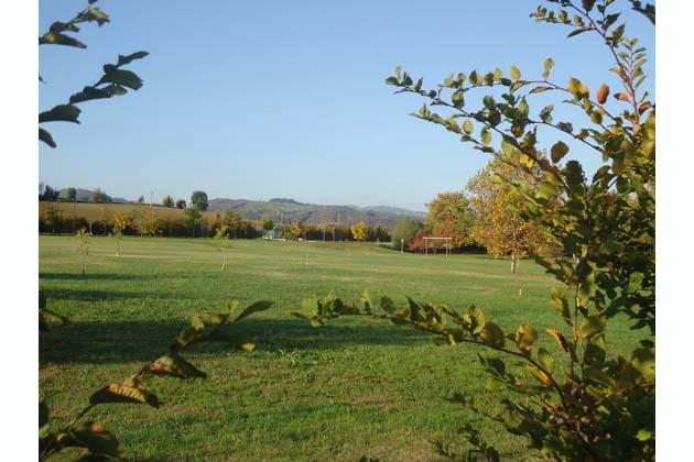 Un albero per ogni nato… a Ozzano
