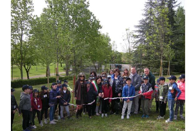 Frassini, ciliegi e tigli selvatici vicino alla Bocciofila