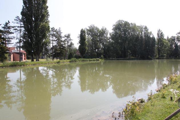 Stop ai cani nel parco del laghetto Scardovi
