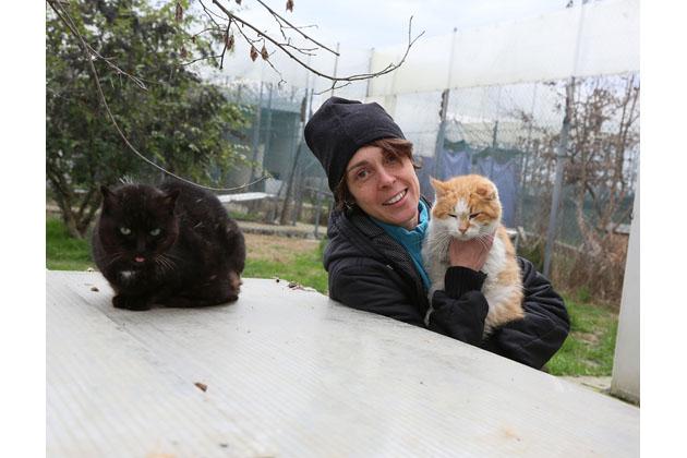 Canile e gattile ereditano quasi 50 mila euro da un lascito