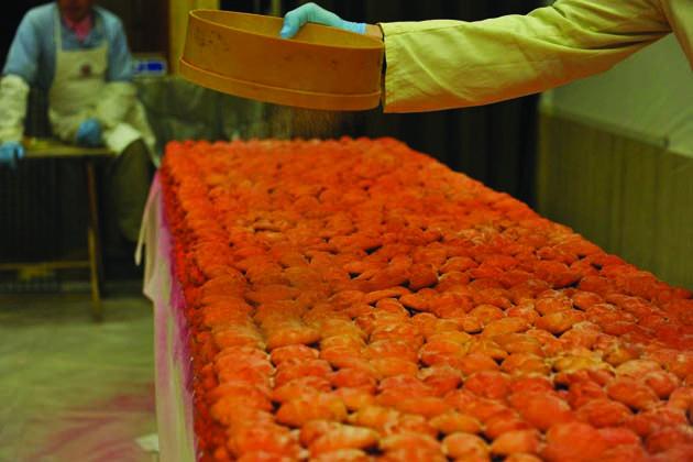Tonnellate di ravioli lanciati dalla torre sui visitatori della Sagra