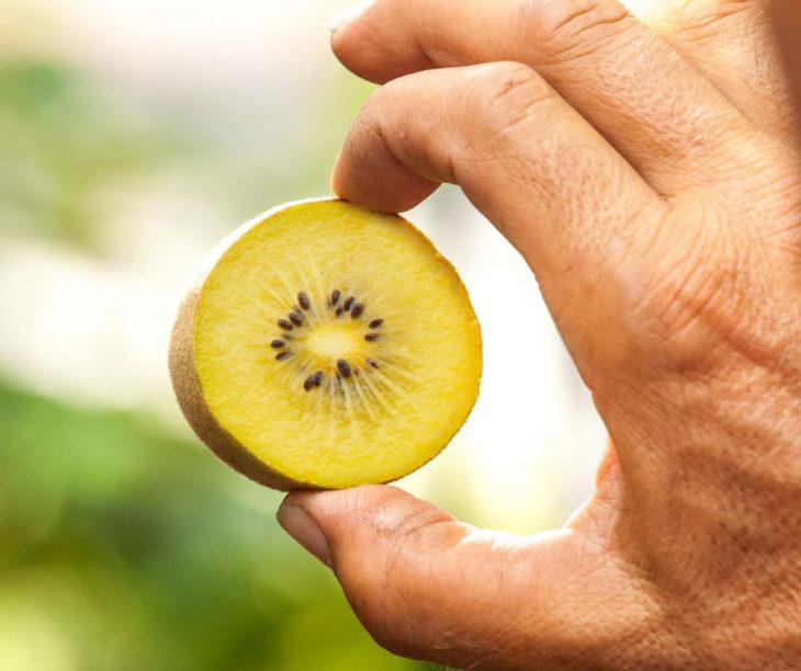 Il kiwi del futuro sarà giallo. La parola agli esperti