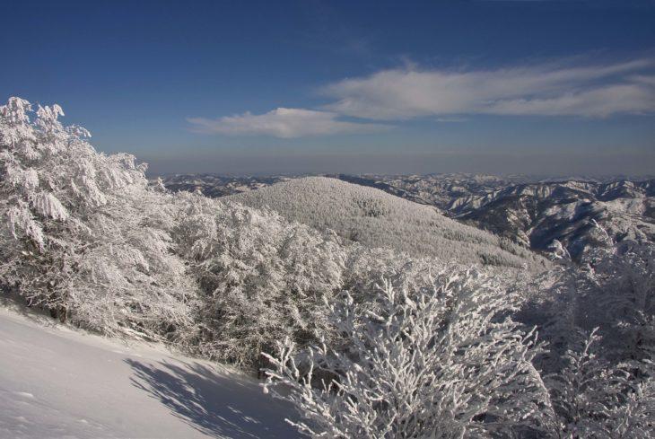 """Parco nazionale Foreste Casentinesi, escursione guidata nella """"Foresta di ghiaccio'"""