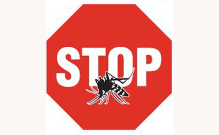 Prevenzione anti-zanzara tigre, a Imola scatta l'ordinanza sui trattamenti obbligatori. Larvicidi acquistabili nei punti autorizzati