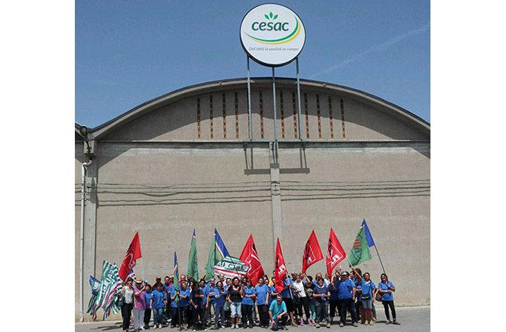 Cesac in crisi, allarme dei sindacati. Piano di salvataggio con cessione dell'orticolo a Patfrut