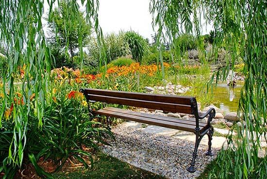 Gli Angeli della musica animano il giardino. Debutto al pianoforte con Roberta Di Mario e Paola Angeli