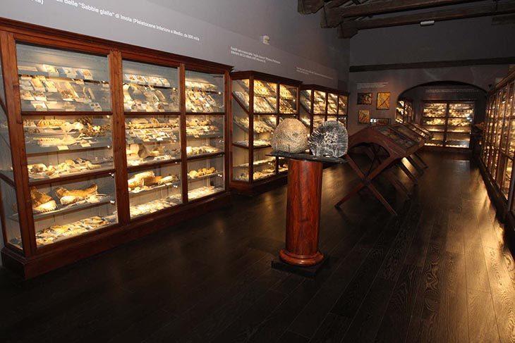 Ferragosto al museo: il 15 agosto a Imola aperti Museo di San Domenico, Rocca e palazzo Tozzoni