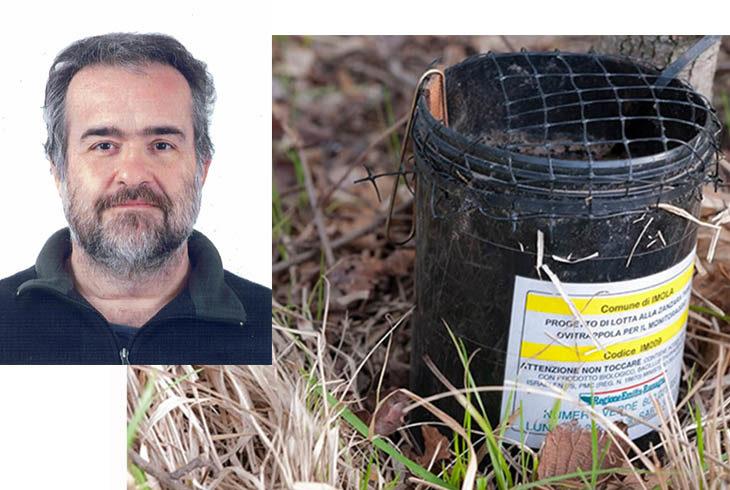 La trappola brevettata made in Imola per catturare le zanzare tigre inventata da Maurizio Magnani