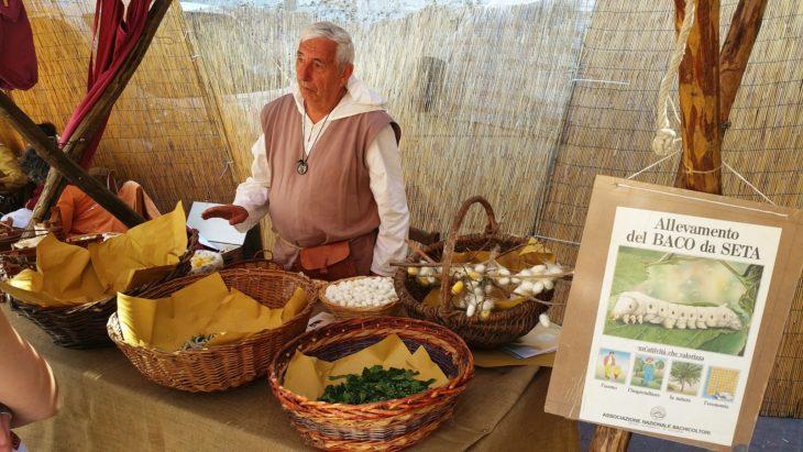 A Medicina l'allevamento del baco da seta, fra hobby e tradizione