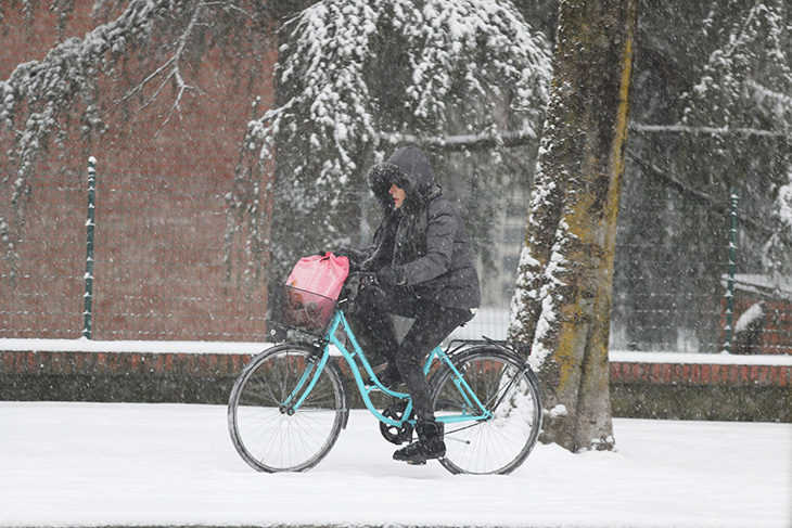 Neve, immagini suggestive da Imola e dintorni. IL VIDEO