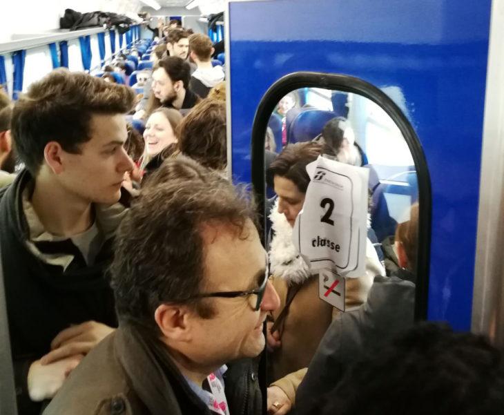 Treni in ritardo sulla linea Adriatica per l'investimento di un animale a Cesena