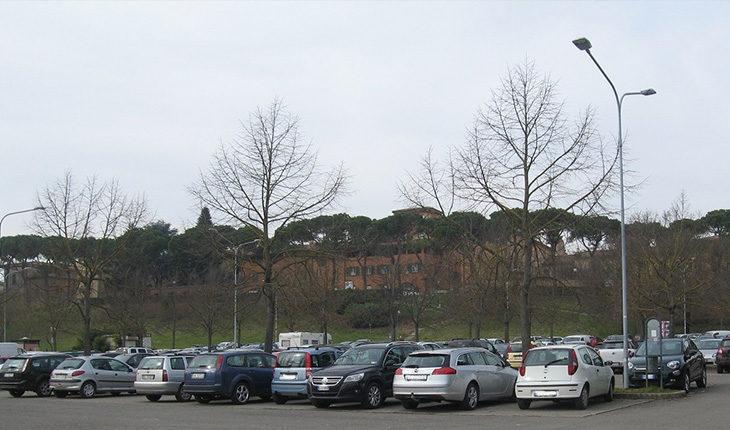 Illuminazione pubblica, a Castello la società Solaris sostituirà mille lampade in dieci anni