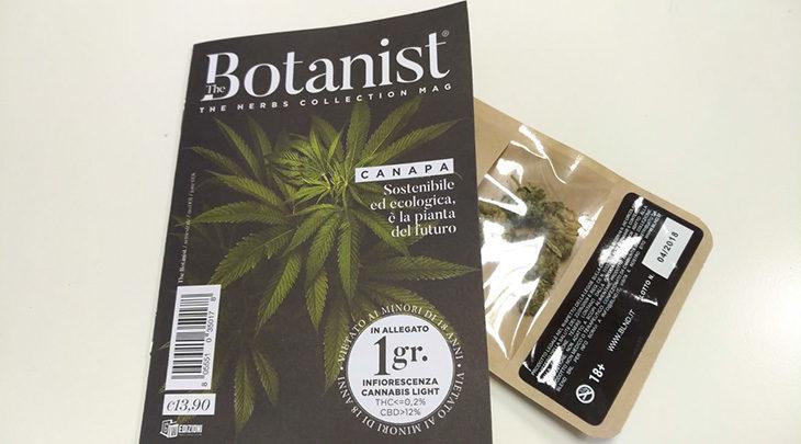 Marijuana «light», polemiche e norme di un settore in crescita. La situazione a Imola