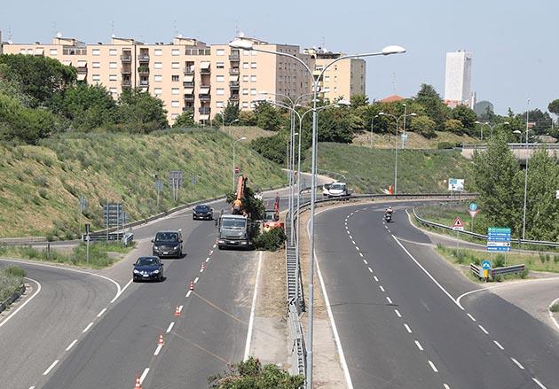 Verde pubblico, eliminati gli arbusti al centro dell'asse attrezzato e potati i tigli di viale Rivalta