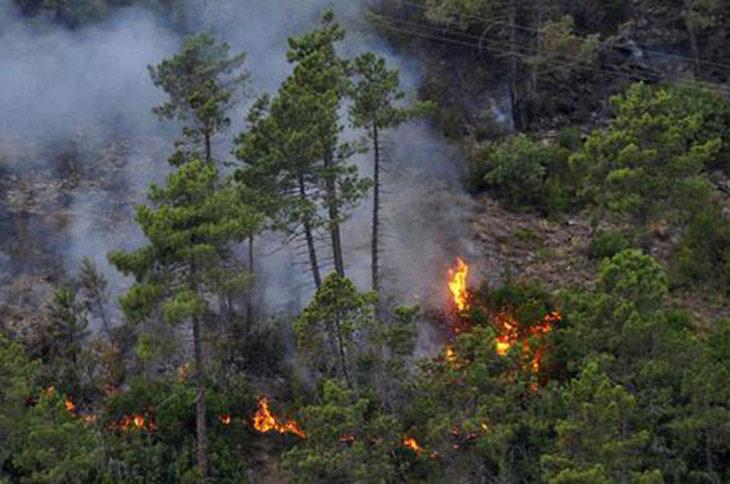 Incendi, fino al 30 settembre in Emilia Romagna è attiva la fase di attenzione per prevenirli e contrastarli