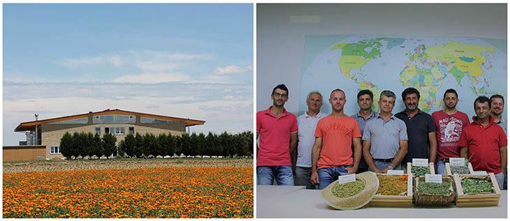 A Medicina nuovo business per Agribioenergia grazie alle piante officinali