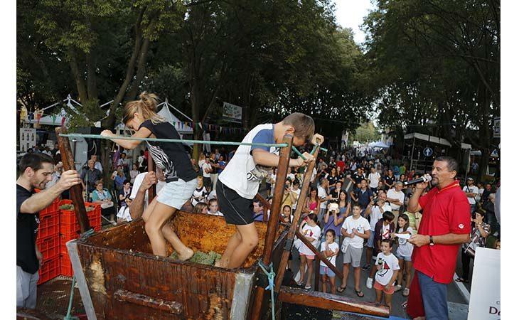 Musica, sport, arte e gastronomia: lo spettacolo della Festa del Contadino. IL VIDEO