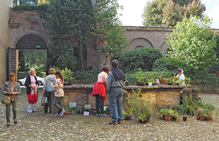 """Il 30 settembre domenica """"verde': giardini protagonisti a palazzo Tozzoni, La Serra propone le piante da appartamento"""