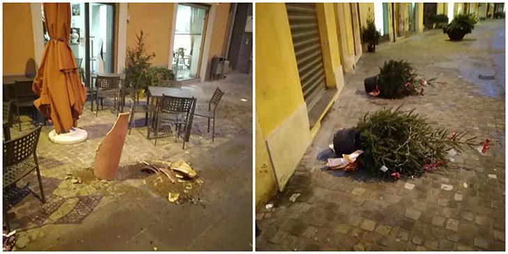 Vandali in azione in centro storico, vasi in frantumi e alberi di Natale rovesciati