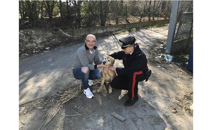 Cane rischia di annegare in un fossato, salvato dai carabinieri