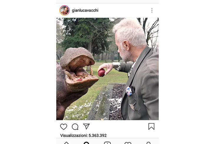 Il video dell'ippopotamo in giardino mette nei guai Gianluca Vacchi (Ima), accertamenti della forestale