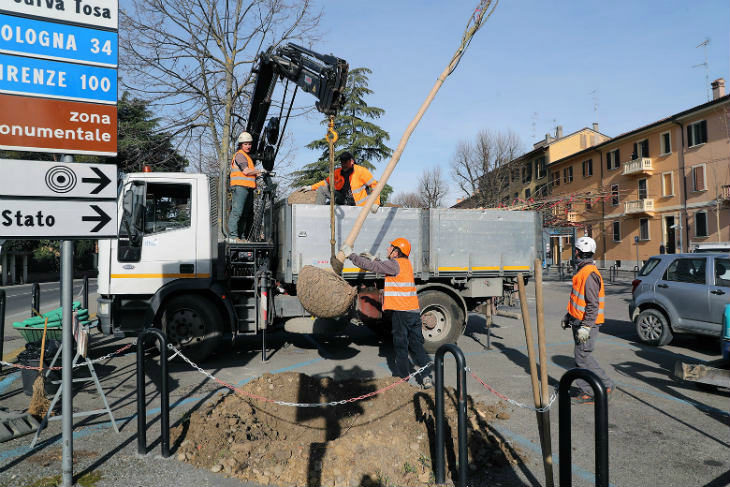 Si completa in questi giorni la messa a dimora di 17 alberi tra piazzale Ragazzi del '99 e viale Dante