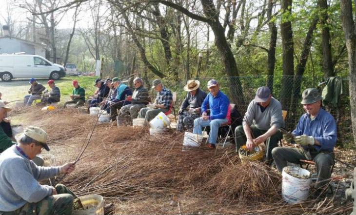"""Decine di volontari metteranno a dimora quindicimila piante per la diciassettesima edizione di """"Salviamo la montagna"""""""