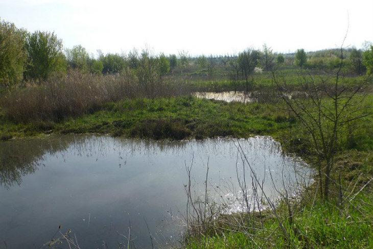L'area dell'ex caserma Gamberini di Ozzano Emilia sarà rinaturalizzata, esclusi utilizzi residenziali o produttivi