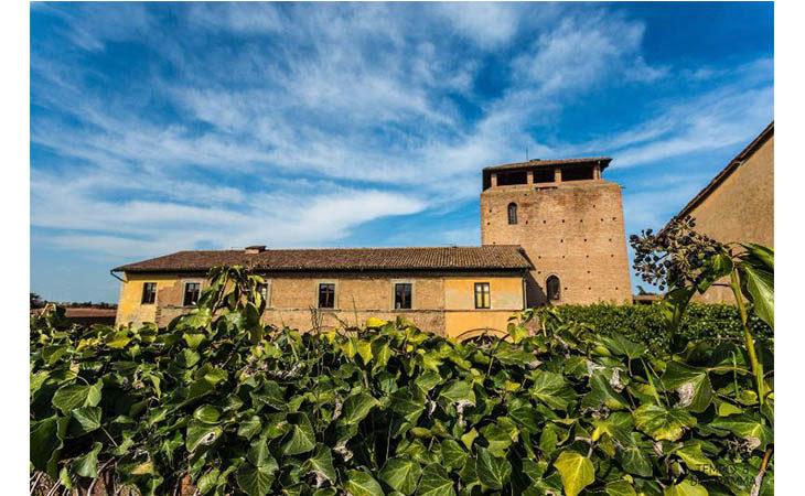 Palazzo Tozzoni, Rocca Sforzesca e Museo di San Domenico aperti nei giorni festivi di primavera