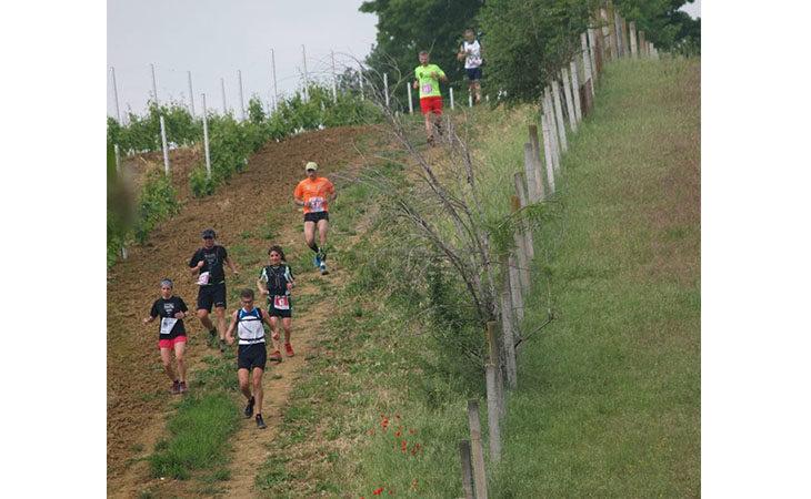 «Dozza Wine Trail», domani il percorso per i bimbi mentre domenica la competitiva e le camminate tra le vigne