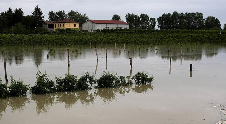 Maltempo, i danni della pioggia, il Sillaro rompe gli argini a Giardino, il Santerno a Casalfiumanese – LE FOTO