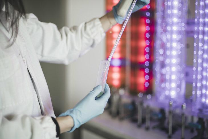La sperimentazione di C-Led (gruppo Cefla) per far crescere microalghe usando luce a led al posto del sole