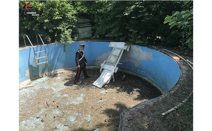 Cucciolo di volpe rimane intrappolato in una piscina abbandonata, salvato e subito rimesso in liberta'. IL VIDEO