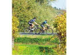 Cicloturismo, la guida ed i percorsi di «If»  per ammirare pedalando le bellezze di Imola e Faenza
