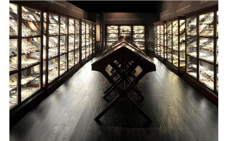 «Musei più aperti» in estate, previste aperture serali e straordinarie a Imola