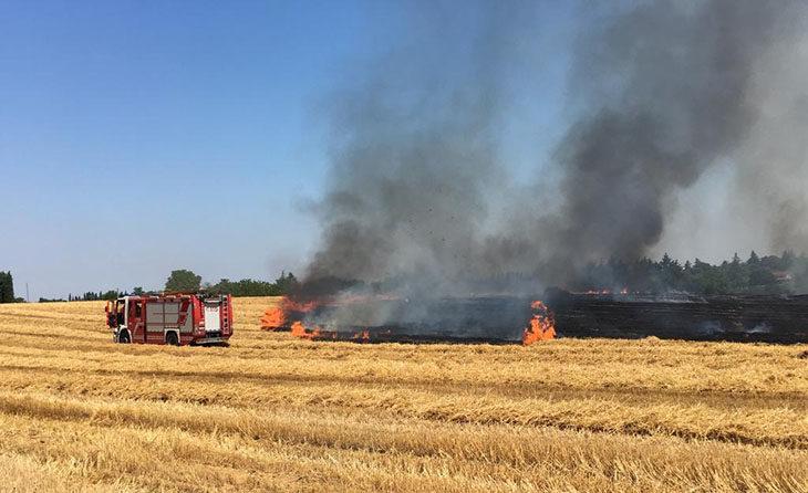 Incendio in un campo vicino all'ospedale di via Montericco a Imola