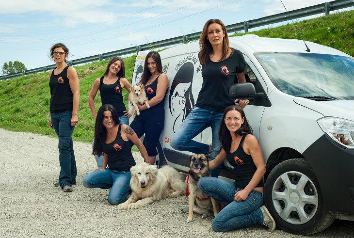 In preparazione il nuovo bando per canile e gattile che introdurrà la gestione associata a partire dal 2020