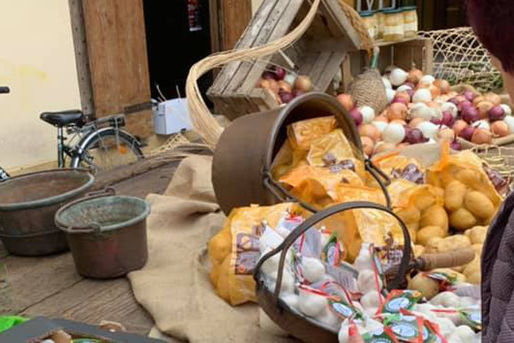 La cipolla, in festa a Medicina: bianca per le frittate, dorata per il ragù, rossa per i contorni