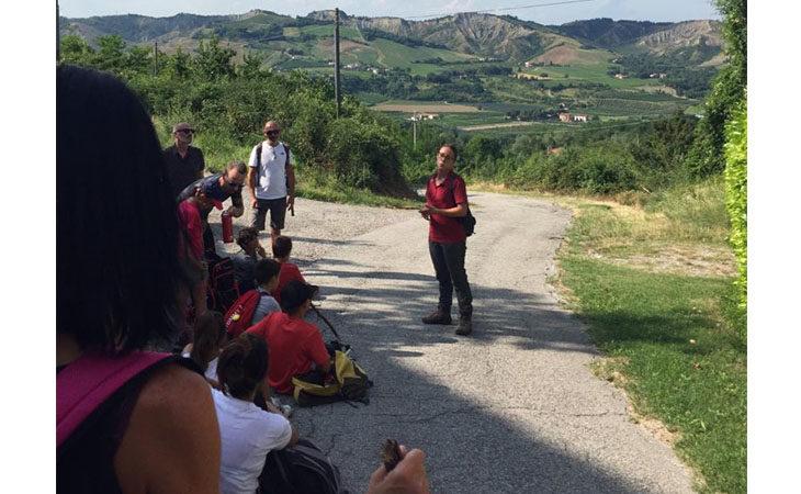 Escursione, con la grotta di Re Tiberio chiusa c'è il trekking gratuito… «della Volpe»