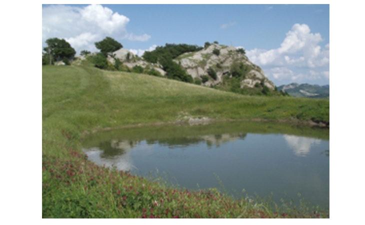 «Notturna a Monte Penzola», escursione da Borgo Tossignano con la guida Schiassi