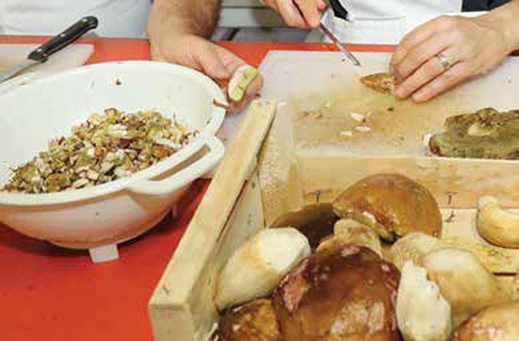 A Castel del Rio il sapore e l'aroma dei porcini