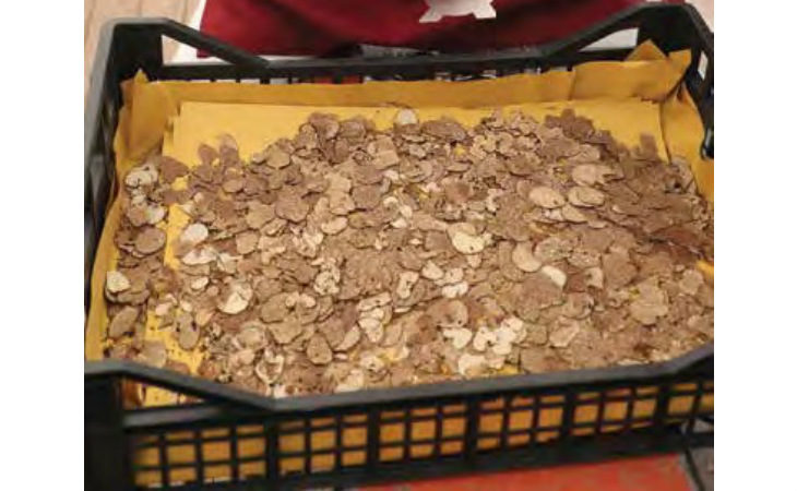 Due weekend al sapore di tartufo a Castel del Rio, tante le proposte allo stand dietro palazzo Alidosi