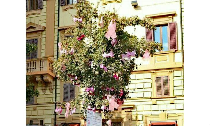 In piazza Gramsci nel mese di ottobre l'«albero rosa» della Lilt per ricordare l'importanza della prevenzione