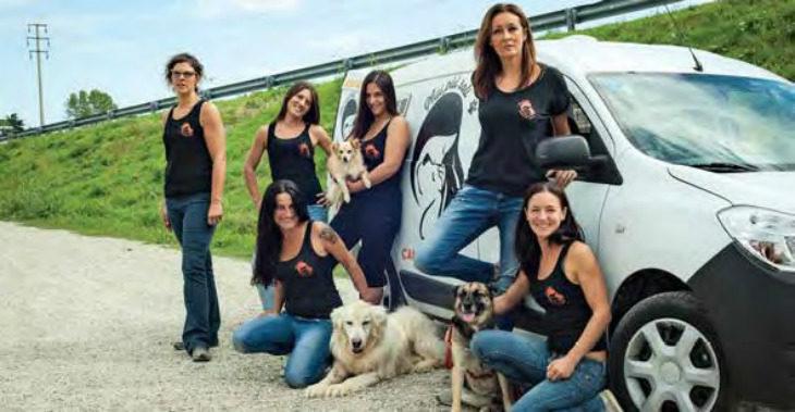 La coop Coala gestore unico per canile e gattile, affidamento per tre anni da gennaio 2020 al dicembre 2022