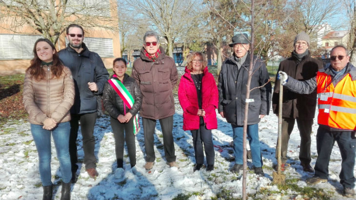 Ambiente, ha preso il via a Dozza il progetto del Comune «Un albero per le scuole»