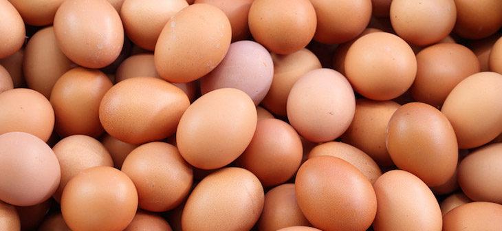 Il ministero della Salute ritira dal mercato alcune confezioni di uova bio e di formaggio