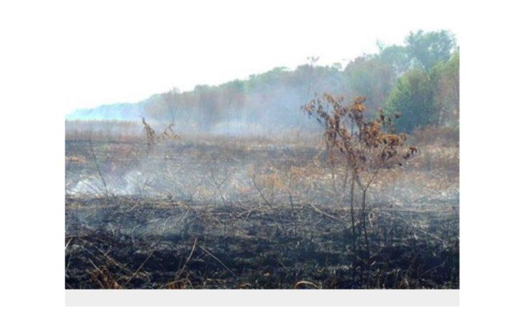 Rischio incendi, l'Agenzia della protezione civile ha fatto scattare lo stato di «attenzione» in tutta la regione