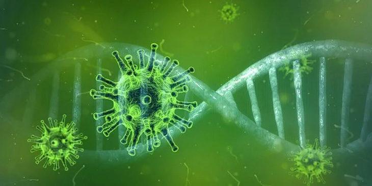 Coronavirus, a Ozzano Emilia 6 casi positivi e 23 persone in isolamento